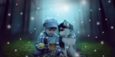 Cuales son las mejores razas de perros para los niños