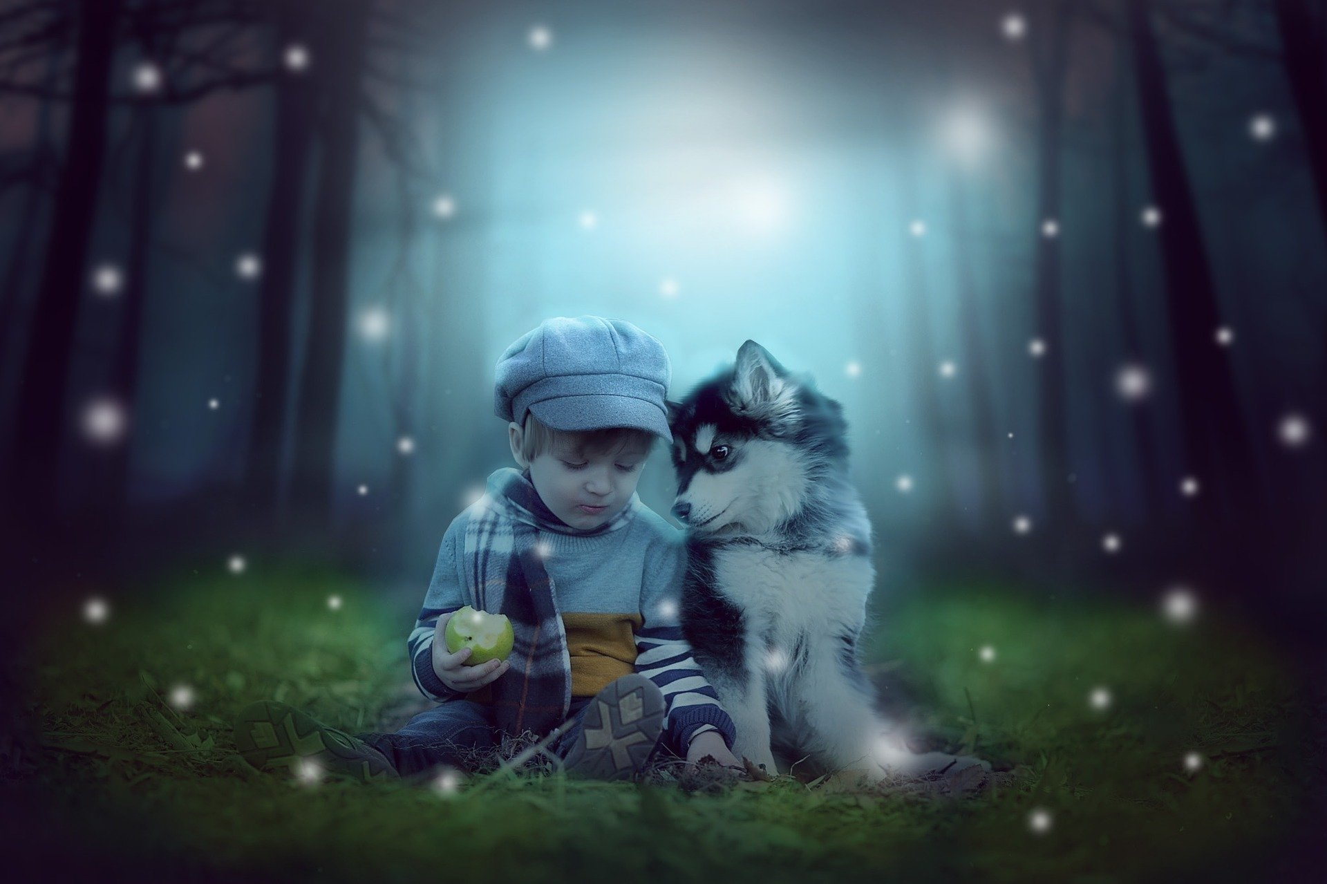husky niños